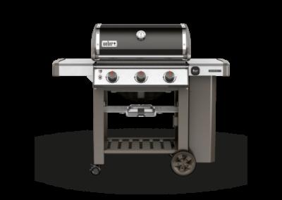Weber – Genesis E-310