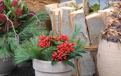 Weihnachtliche Eingangsdeko 18. November